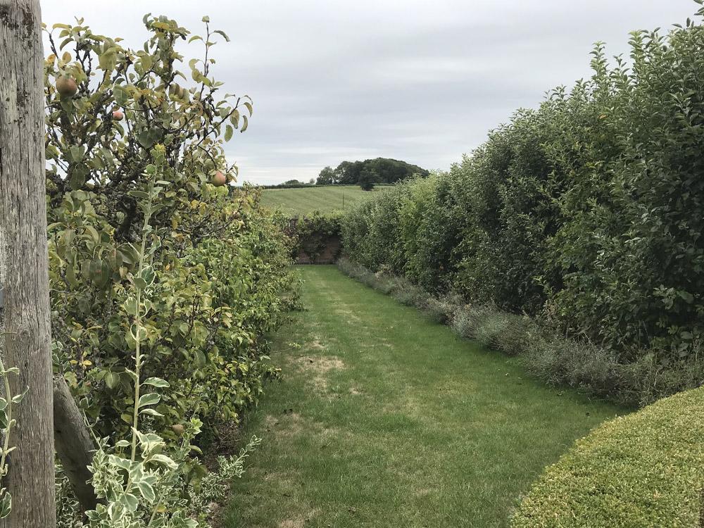 Peery Pears & Cider Apples, Bromesberrow